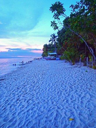 Sunset By The Beach Picture Of Basdaku Beach Moalboal Tripadvisor