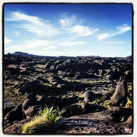 Boa Vista: Monte Roraima