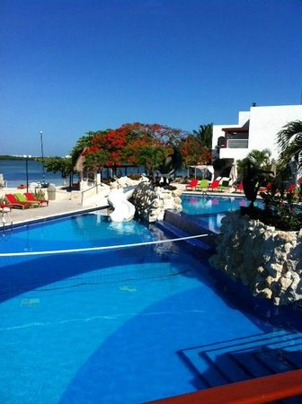 Sunset Marina Resort & Yacht Club: pool