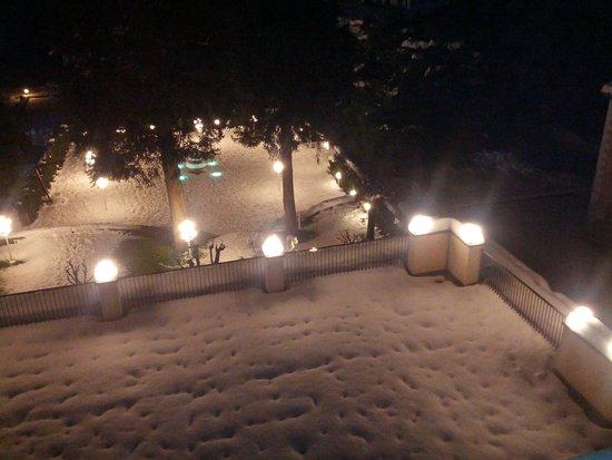 Hotel Stella Alpina : il giardino innevato