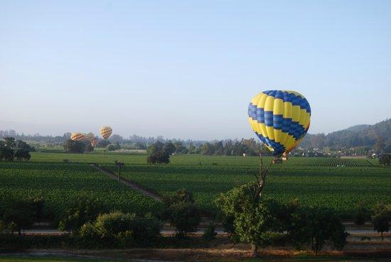 Napa Valley Balloons, Inc. : Napa Valley Balloons June 22, 2014