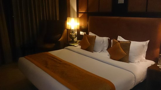 The Fern - An Ecotel Hotel, Jaipur: Suite Room 319