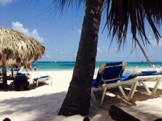 Melia Caribe Tropical: Praia The Level