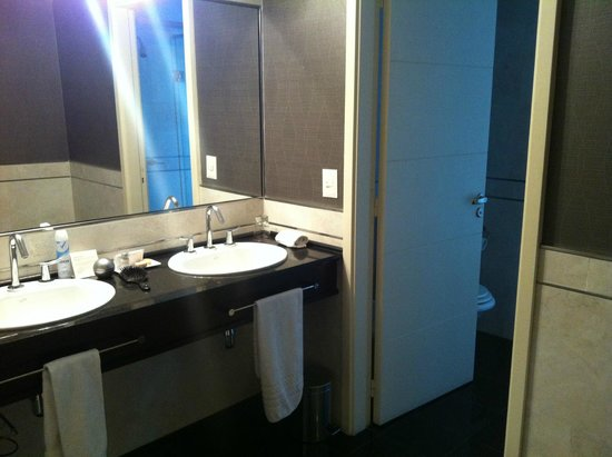 Diplomatic Hotel: Banheiro