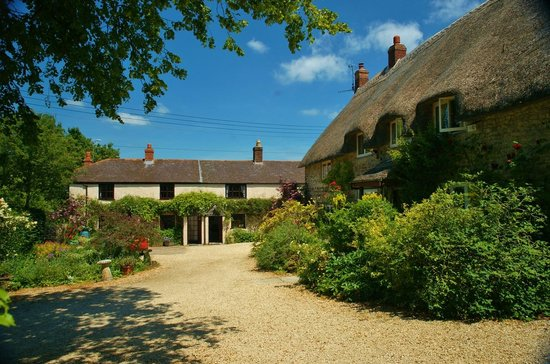 Domineys Cottages: Domineys and the terrace of holiday cottages