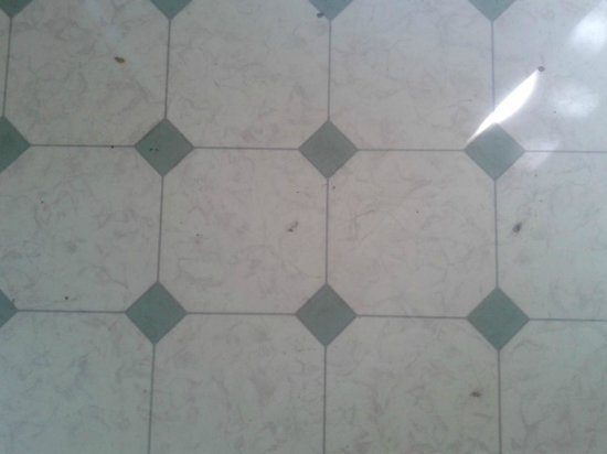 Village Hotel Paradise: pavimento mobilhome con linoleum rovinato