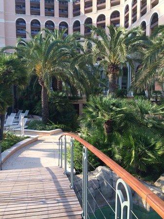 Monte-Carlo Bay & Resort: palms