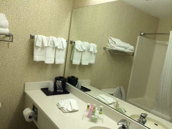 Country Inn & Suites By Carlson, McDonough: Bathrooms