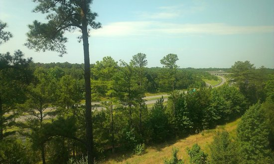 Fairfield Inn & Suites Raleigh-Durham Airport/Brier Creek: Window view looking on the back of the hotel
