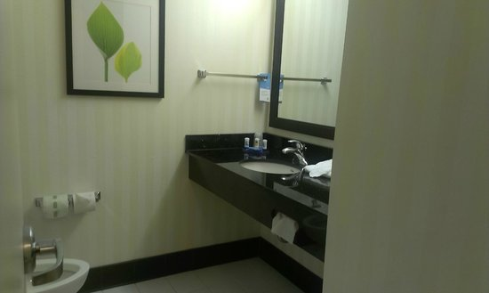 Fairfield Inn & Suites Raleigh-Durham Airport/Brier Creek: Wash basin