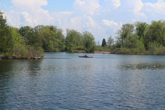 Sleepy Hollow Bed & Breakfast: Kayaking on the St Lawrence is a fabulous treat.