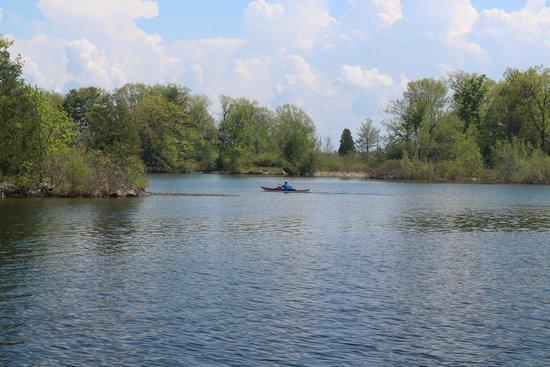 Sleepy Hollow Bed & Breakfast : Kayaking on the St Lawrence is a fabulous treat.