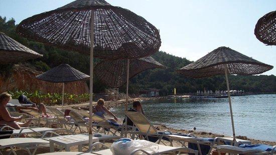 Bodrum Park Resort: spiaggia  e ombrelloni a mere