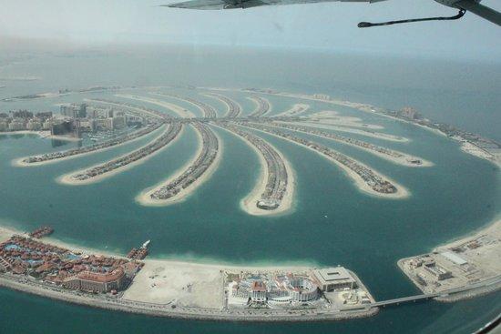 Seawings Seaplane Tours: The Palm