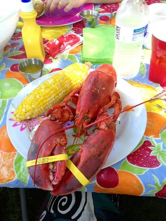 The North End Seafood Company: Lobster - purchased live and boiled at home. Perfection