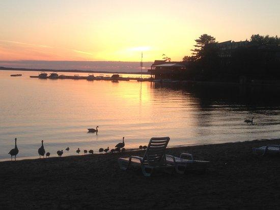 Taboo Muskoka Resort: Sunsets on the beach