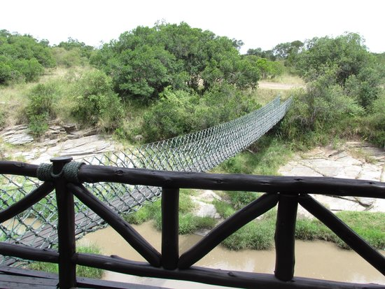 Mara Intrepids Luxury Tented Camp: Rope bridge  from the bar area