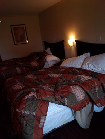 Knights Inn Nashville Downtown: I was too lazy to clean the beds, but they are nice and comfortable.