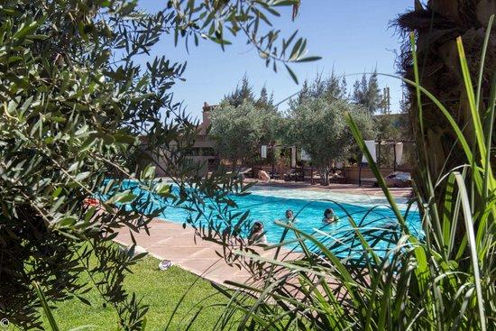 Manzil La Tortue : La piscine