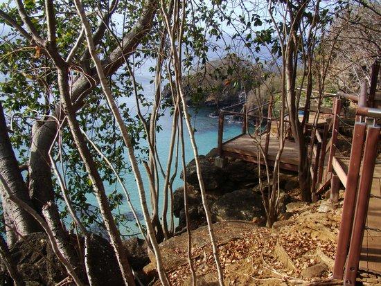 Baia do Sancho: Um dos mirantes da trilha da Baía do Sancho