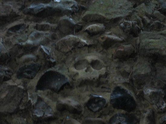Abbey Gardens: skeleton in wall inside Abbeygate