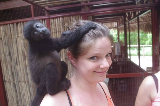 Fundación Jaguar Rescue Center: Meeting the monkeys was fantastic!