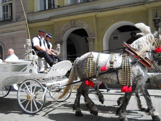 Best Western Premier Krakow Hotel: passeio turistico