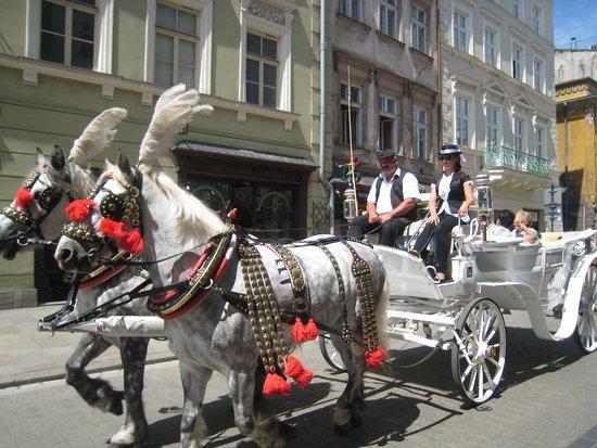 BEST WESTERN PREMIER Krakow Hotel: passeio turistico/condutor mulher