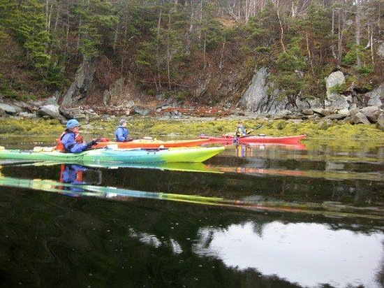 Woody Island Resort: Kayaking along the shores of  Woody Island