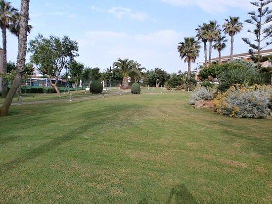 Hotel Apartamentos Princesa Playa: Garden Area