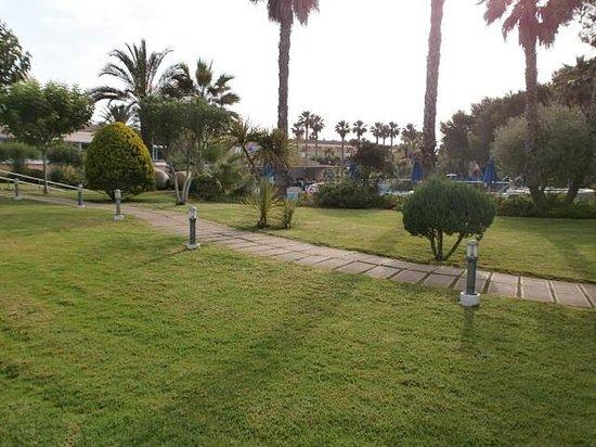 Hotel Apartamentos Princesa Playa: Gardens