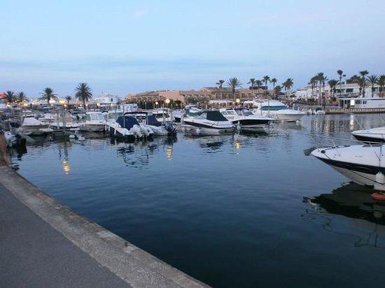 Hotel Apartamentos Princesa Playa: The Marina