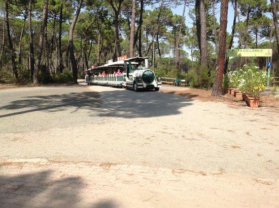 Cieloverde Camping Village: trenino