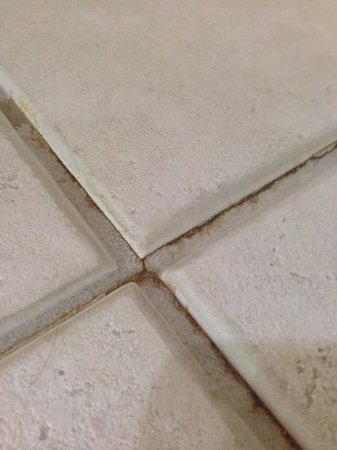 Lido Beach Resort: anothe closer shot of stained cracked grout in bathrooms
