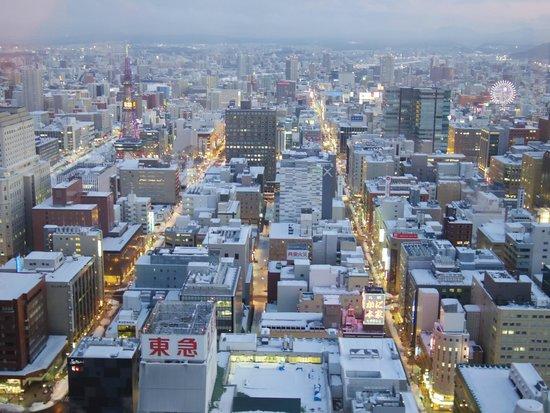 JR Tower Hotel Nikko Sapporo: 34階エグゼクティブツイン・南向き