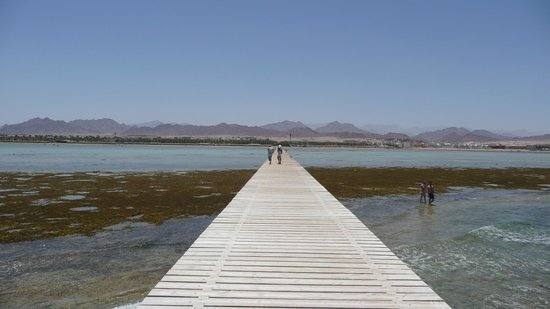 Jaz Mirabel Beach: Jetty