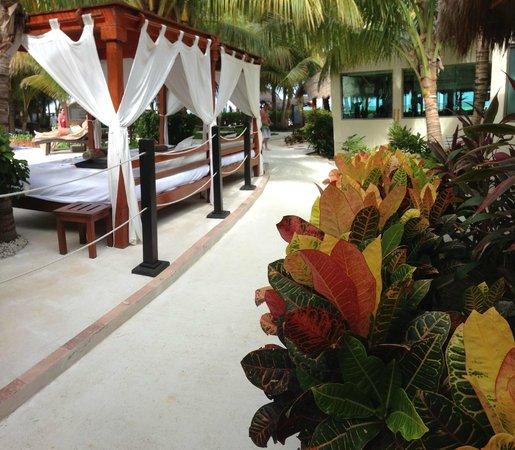 El Dorado Maroma, a Beachfront Resort, by Karisma: Poolside (Main Pool)