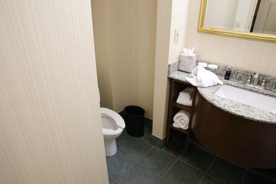 Embassy Suites by Hilton Orlando Airport : bathroom