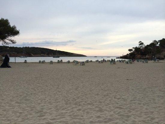 Presidente Hotel: Local Beach