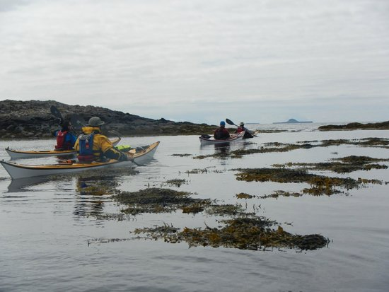 Sea Kayak Scotland: Phil B