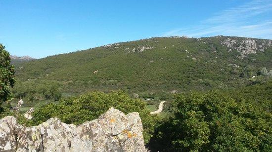 Agriturismo Montecresia: Vista panoramica dall'agriturismo