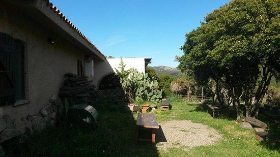 Agriturismo Montecresia: Particolare agriturismo