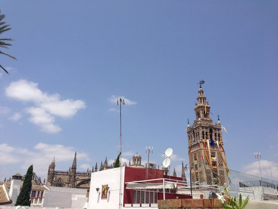 Hotel Palacio Alcazar: View from Terrace