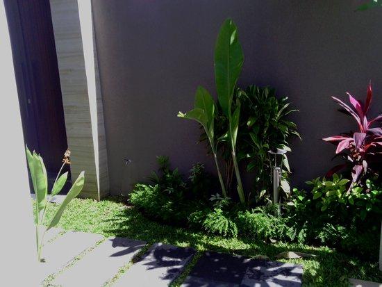 Uppala Villa & Spa Umalas: plantes dans la villa