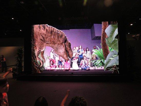 National Museum of Natural History : Dinossaur experience - se tiver com crianças é sensacional, elas ficam doidas!