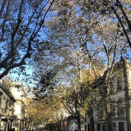 Dolce Vita Hostel: rua soriano