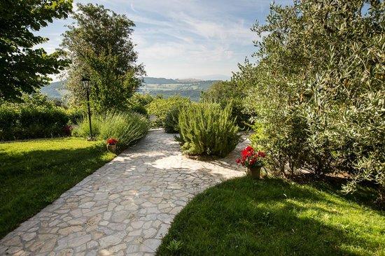 Relais Villa Sensano: Sentier menant à la piscine