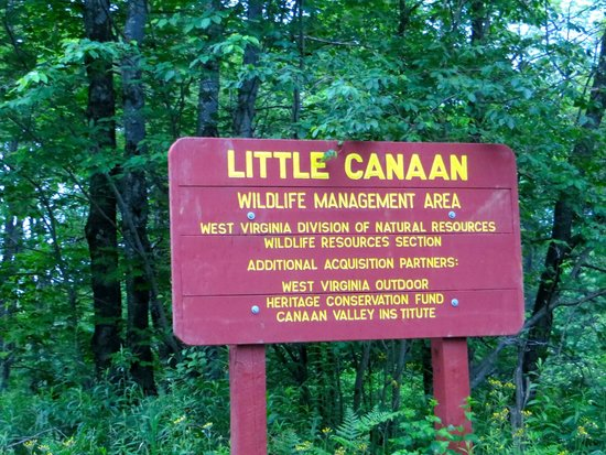 ‪Little Canaan Wildlife Management Area‬