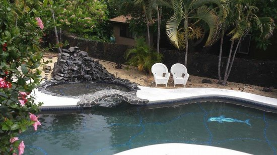Hale O Pua Lani: Pool