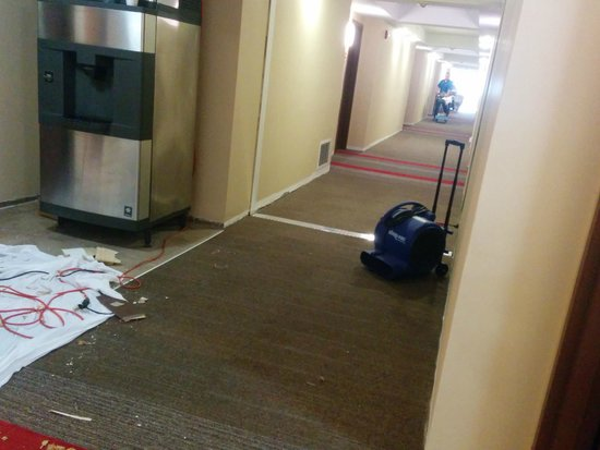 Four Points by Sheraton Asheville Downtown : Shop-vac, one of the items that woke us up.